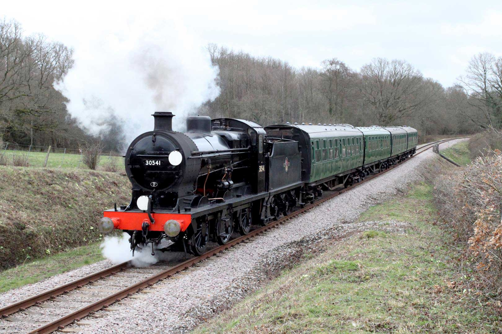 Bluebell Railway Reopening